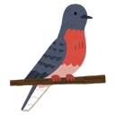 :pigeon: